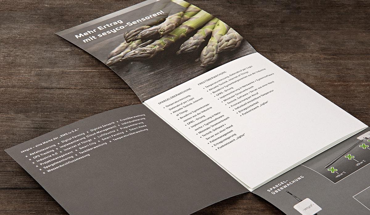 Branding/ Konzeptarbeit/ Corporate Design/ Imageflyer/ sesyco – eine Marke der Rms.lu S.A. Luxemburg/ Brand Design/ Logo/ KERSTIN MICHELS – DESIGN/ Designagentur/ Werbeagentur/ Grafikdesign/ Kommunikationsdesign/ Hermeskeil / Hochwald/ Trier/ Rheinland-Pfalz/ Werbung/ Design