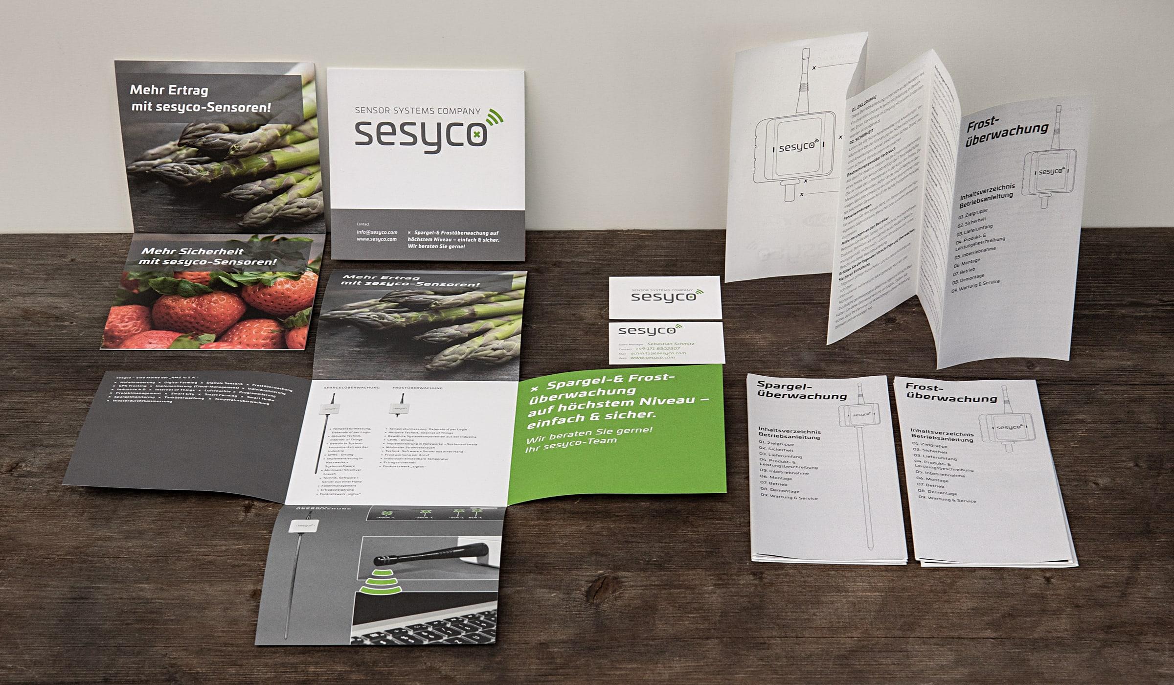 Branding/ Konzeptarbeit/ Corporate Design/ sesyco – eine Marke der Rms.lu S.A. Luxemburg/ Brand Design/ Logo/ KERSTIN MICHELS – DESIGN/ Designagentur/ Werbeagentur/ Grafikdesign/ Kommunikationsdesign/ Hermeskeil / Hochwald/ Trier/ Rheinland-Pfalz/ Werbung/ Design